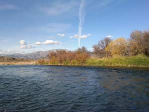 Fly fishing on rivers surrounding jackson hole wyoming for Salt river fishing